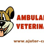 Ambulanta veterinara Pethome