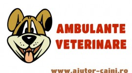 Ambulanta veterinara Salvavet