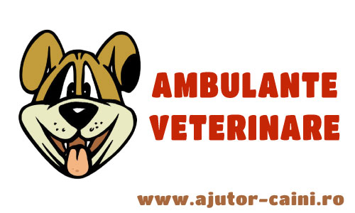 Ambulanta Veterinara 24H