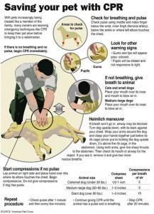 metoda heimlich la caini