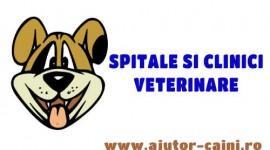 Clinici veterinare Craiova: Clinipet