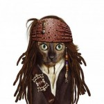 Animale costumate - caine Jack Sparrow
