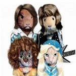 Animale costumate - animalute Abba