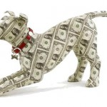 dog money 150x150 Este cainele meu normal?
