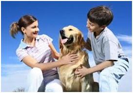 Animalele – dincolo de fiinta umana. Copiii si animalele.