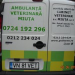 AMBULANTA VETERINARA MIUTA