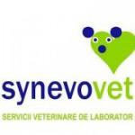 synevovet cabinet veterinar