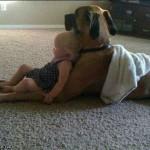 copil si caine: cei mai buni prieteni