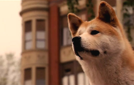 Hachiko, a dog story