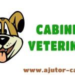 banner cabinet veterinar