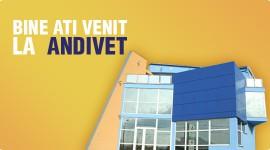 Andivet – spital veterinar Deva
