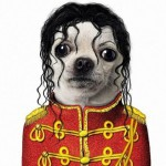 Animale costumate - caine Michael Jackson