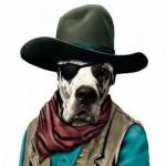 Animale costumate - caine John Wayne